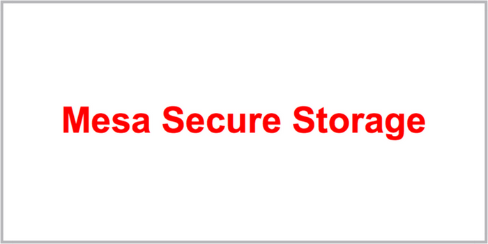 Mesa Secure Storage sponsors the East Valley Veterans Parade